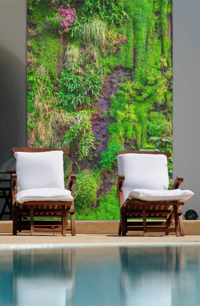 bache mur vegetal