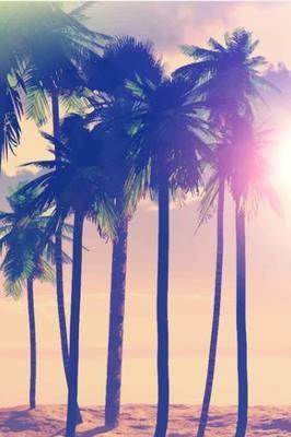 Poster satin SUNSET PALM